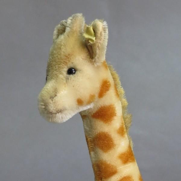 Steiff Giraffe 1954 - 1964.