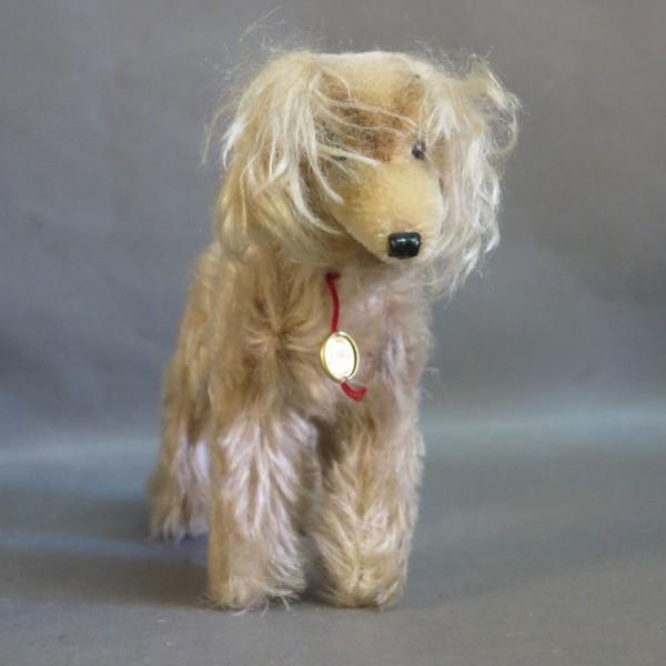 Herrmann Dog. Germany 1950...