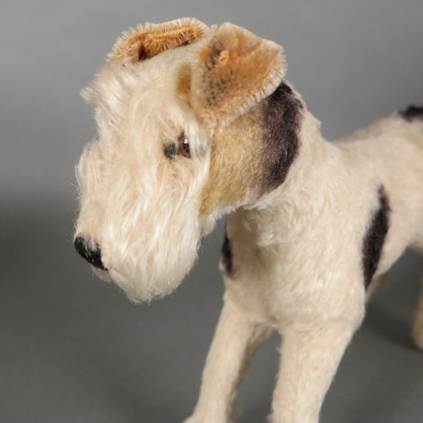 Steiff Fox Terrier. 1955 -...