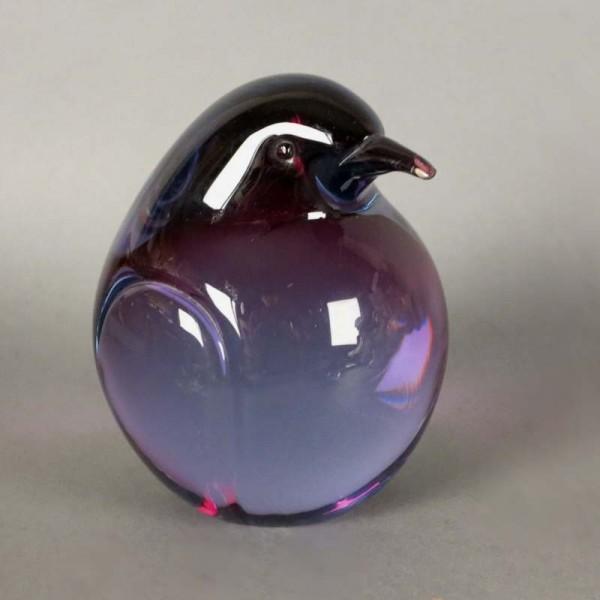 Pingüino - Kiwi de cristal...